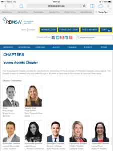 reinsw young agents